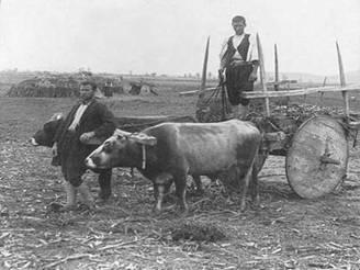 Θεσσαλοί αγρότες με αραμπά