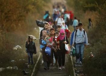 221904_migrants_make_their_way_towards_hungary