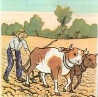 Σφυροκόπημα στους φτωχούς και μεσαίους αγρότες